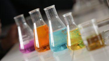 Qué son las bases nitrogenadas